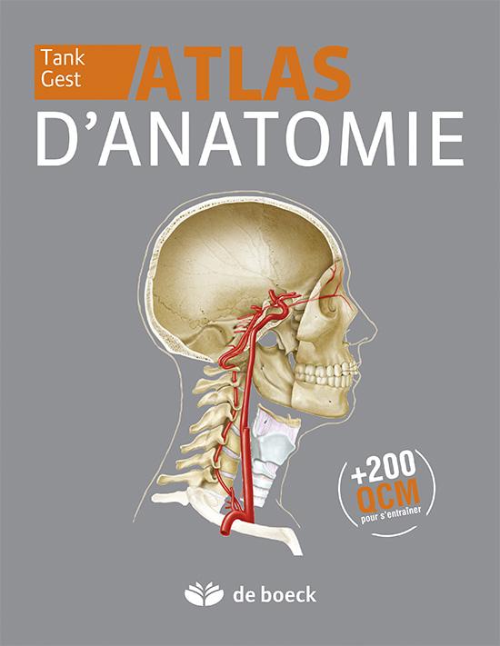 Atlas d\'anatomie | De Boeck Supérieur