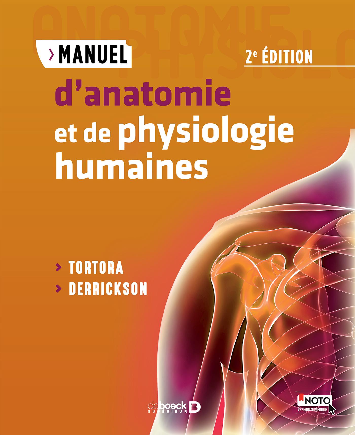 Fein Anatomie Und Pysiology Galerie - Physiologie Von Menschlichen ...
