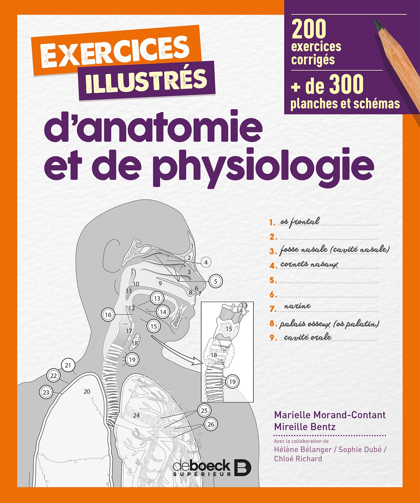 Exercices illustrés d\'anatomie et de physiologie | De Boeck Supérieur